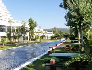 Surmeli Efes